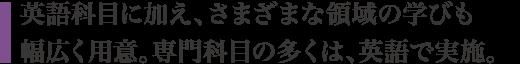 英語科目に加え、さまざまな領域の学びも幅広く用意。専門科目の多くは、英語で実施。