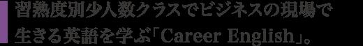 習熟度別少人数クラスでビジネスの現場で生きる英語を学ぶ「Career English」。